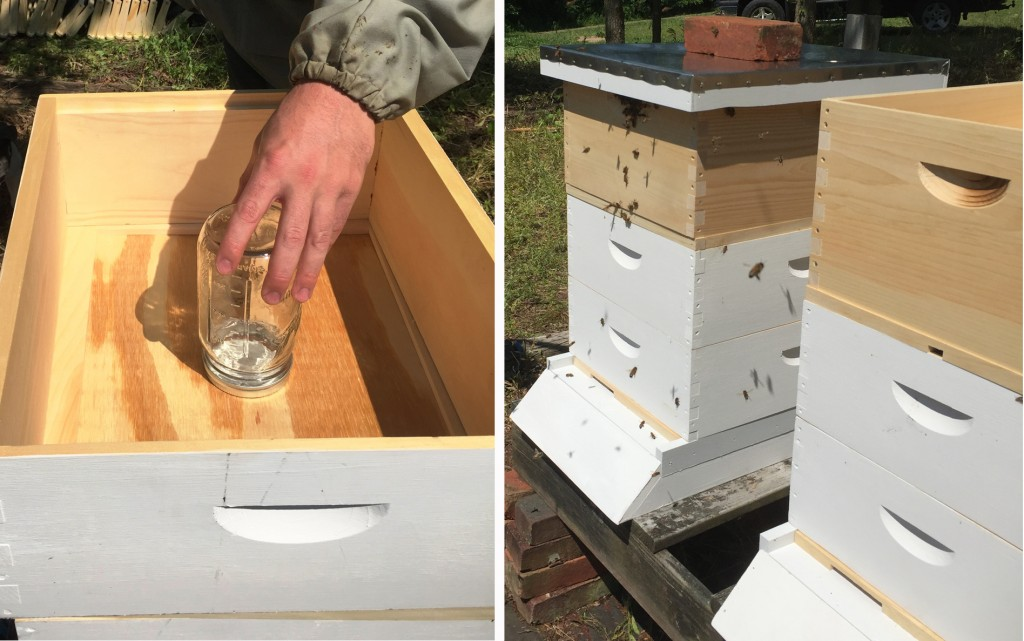 "At left, the ""feeder"" jar is centered over the slot in the box. It will contain a 50/50 mixture of sugar and water to nourish the colony until it can establish its own supply of nectar and pollen. At right, the photo shows how the completed bee hives will look with the capped cover placed at the top to protect the feeder. Each hive is its own distinct ""colony"" with its own ""queen bee."""