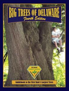 BigTrees_Delaware