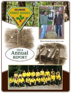2014 DFS Annual Report