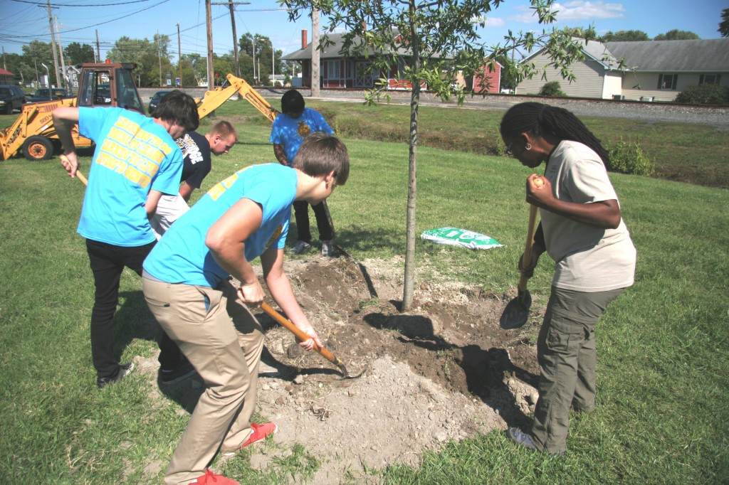 Greenwood Tree Planting Event_2012 (27)